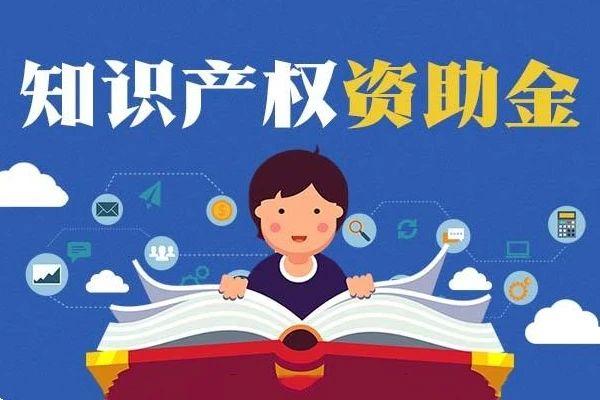 北京市知识产权资助金管理办法(试行)